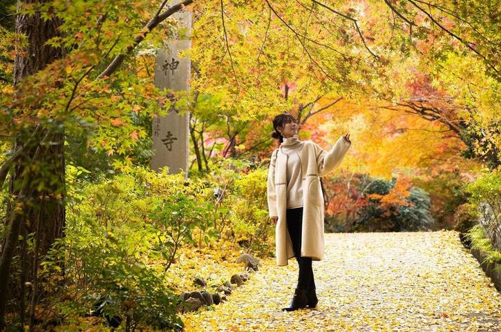 「森の京都」。歴史と日本の原風景に出逢う1泊2日の旅記事に出演中